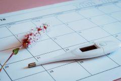 ¿Sabes cómo identificar tus días fértiles de embarazo?