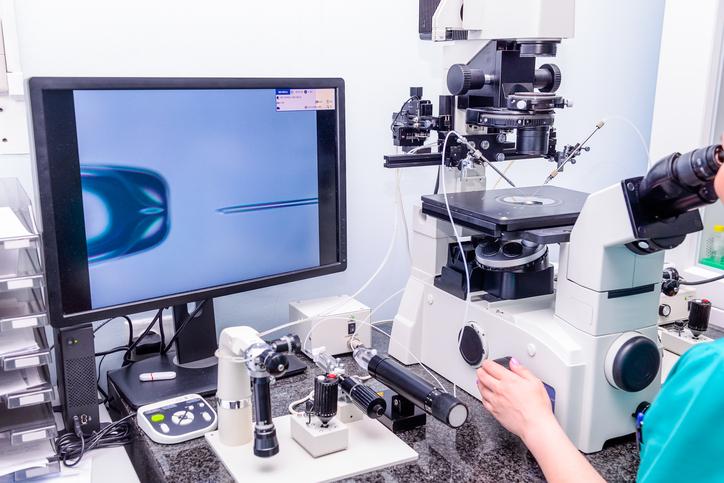implantacion embrion fiv