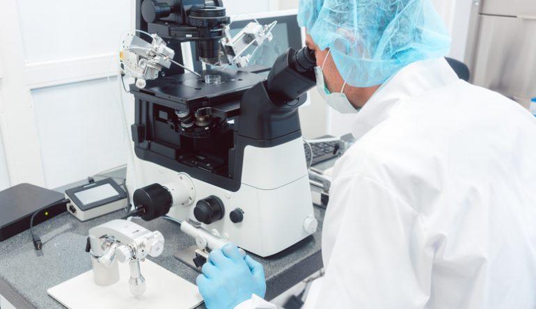 exito de la transferencia embrionaria