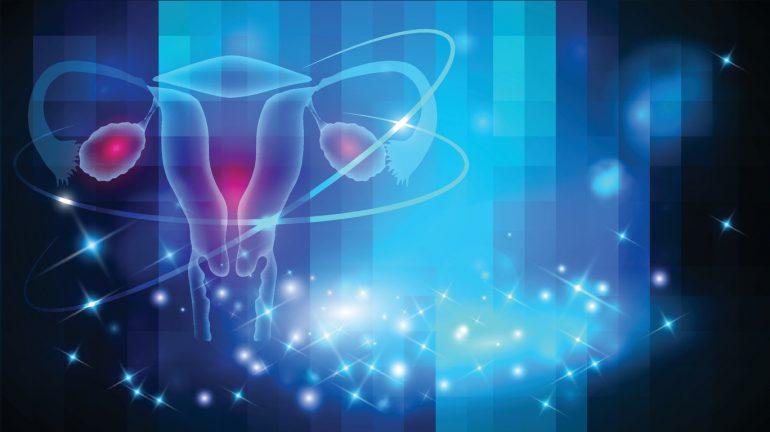 medidas del endometrio segun el ciclo