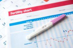 Calendario de fertilidad: planifica tus posibilidades de concebir